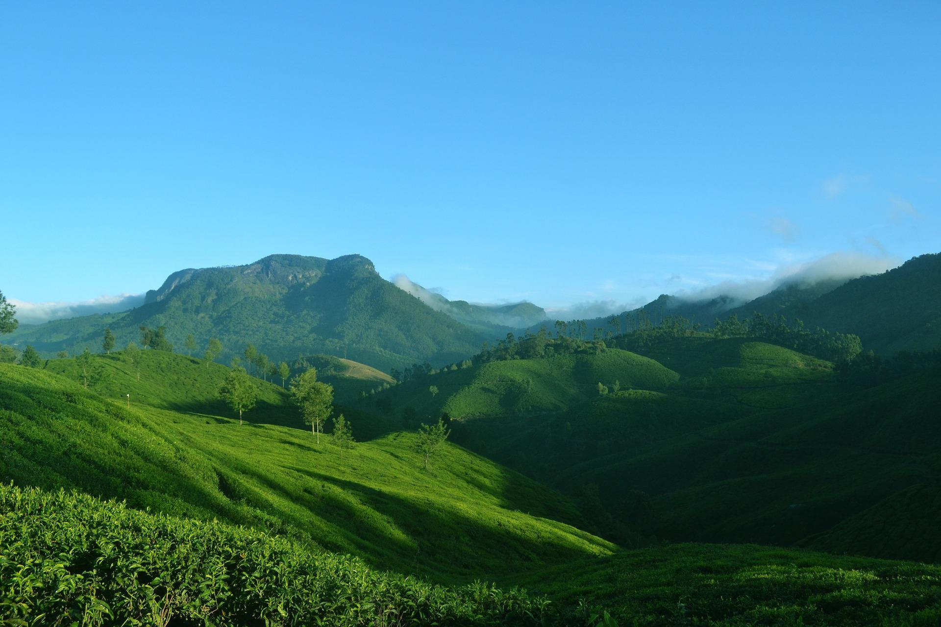 Wayanad Kerala-India