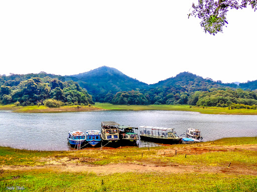 a lake with four passenger boats in the periyar tiger reserve thekkady