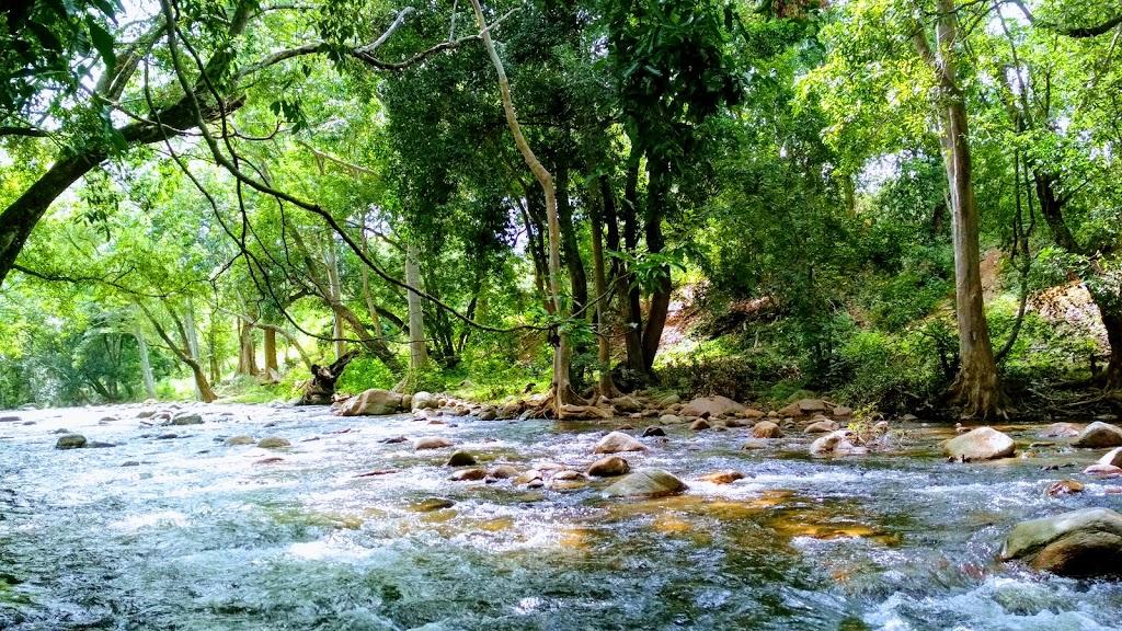 river in Munnar