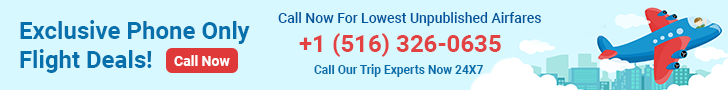 Exclusive phone only flight deals
