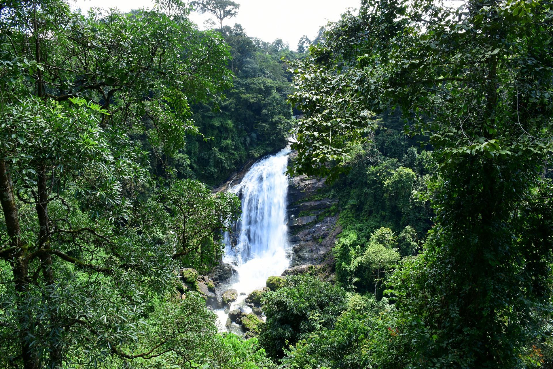 Waterfall Munnar, Kerala